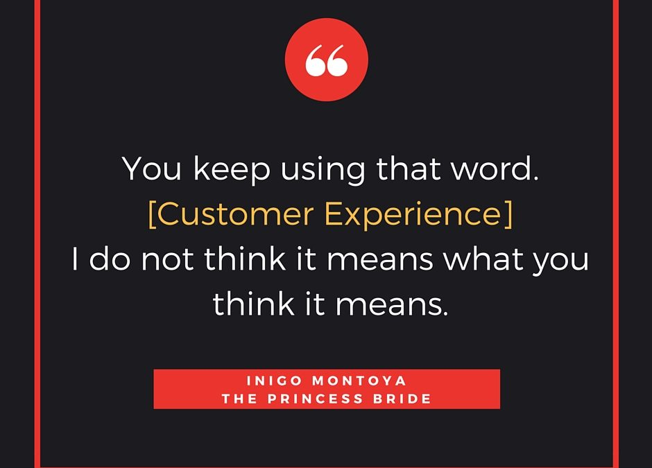 Customer (in)Experience, Inigo Montoya and Maya Angelou